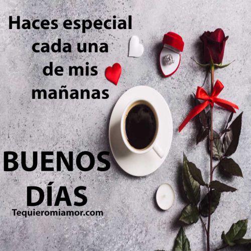 cafe y rosas de la mañana