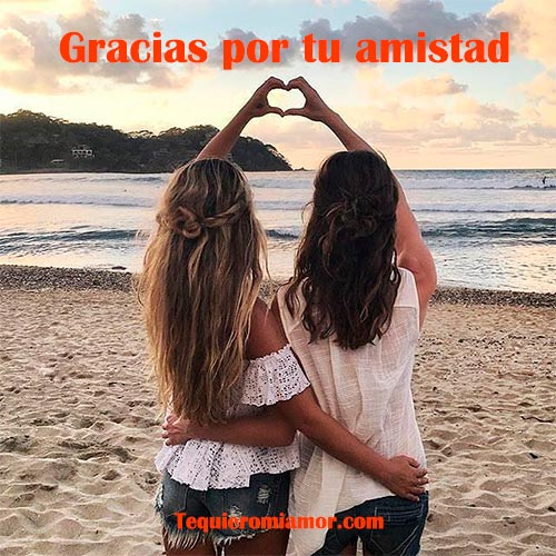 Gracias por tu amistad amiga